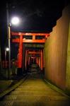 FusimiInari2.jpg